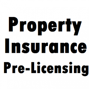 property-insurance-pe